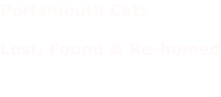 Portsmouth Cats   Lost, Found & Re-homed